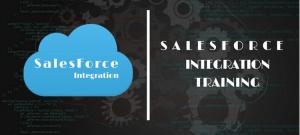 Sales Force