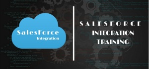 Salesforce Online Training Hyderabad