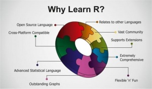 R Programming Online Training Hyderabad